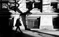 Funky tree (Leonegraph) Tags: funky music outdoor drausen outside shadow leonegraph streetphotographer streetphotography story urban spontan spontanious candid unposed human street 2018 europe germany deutschland city stadt monochrome bw blanco negro bn sw schwarz weis black white panasonicgx80 panasonic1235mmf28 mft microfourthirds hannover hanover