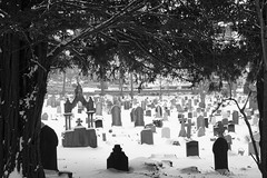 Walk Among The Tombstones (JamieHaugh) Tags: clevedon northsomerset england uk gb greatbritain outdoors sony a6000 church churchyard graves tombs trees blackandwhite blackwhite bw monochrome nature window winter cold snow frame peace