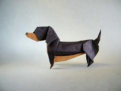 Dachshund - 212moving (Rui.Roda) Tags: origami papiroflexia papierfalten dog chien perro cão cachorro dachshund 212moving