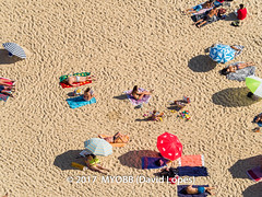 Portugal 2017-9021092-2 (myobb (David Lopes)) Tags: 2017 adobestock allrightsreserved atlanticocean europe nazare portugal aerialview beach beachumbrella copyrighted day daylight enjoyment highangleview leisureactivity outdoors sand sunbathing tourism touristattraction traveldestination umbrella vacation ©2017davidlopes