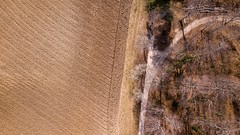 (Magikphil) Tags: champvent vaud suisse ch