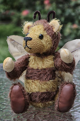 Buzzy Bee (crafty1tutu (Ann)) Tags: handmade creations mohair fur bee bumblebee handsewn fullyjointed animal crafty1tutu canon7dmkii canon24105lserieslens anncameron challenge 52in2018challenge 34many bear