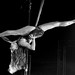 Pole Dancer ¬ 6952
