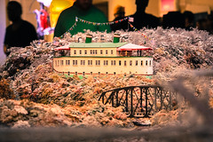 IMG_1216 (Adam's Journey) Tags: 2018 family pittsburgh pennsylvania alleghenycounty carneigesciencecenter modeltrains carnegiesciencecenter