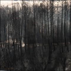 tempo (incognitaNdP) Tags: devastating fires centralportugal