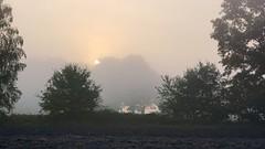 *** (pszcz9) Tags: polska poland przyroda nature wschódsłońca sunrise mgła fog mist słońce sun drzewo tree pejzaż landscape dolinabaryczy baryczvalley jesień autumn fall beautifulearth sony a77