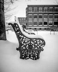 Aint Over Yet... (Fret Spider) Tags: winter spring bench snow weather booked chair outside nature over finish conclude end wrap architecture monochrome bw drift canonef24mmf14liiusm wideangle ultrawideangle canoneos5dmarkiii dslr neighborhood
