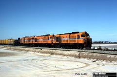 J828 XA1412 XB1008 XA1411 (RailWA) Tags: railwa philmelling westrail joemoir xa1412 xb1008 xa1411 forrestfield yard