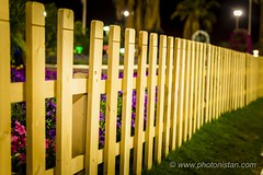 Fence (Photonistan) Tags: leadinglines photonistan photography smileonsaturday fancyfence fence