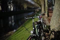 spring light@KÖ, Düsseldorf 8 (Amselchen) Tags: bicycle bokeh blur dof depthoffield season spring kö düsseldorf germany sony a7rii alpha7rm2 sonyilce7rm2 zeiss carlzeiss planar planar1450tzs planar5014zs planar1450 m42