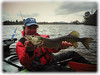 Loch Lomond Pike (Nicolas Valentin) Tags: lochlomond pike lomondpike fish brochet scotland kayak kayakfishing hto lurefishing