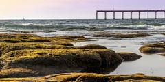 Reconciliation (matthew:D) Tags: beach pier water sky boat wet rocks sandiego waves