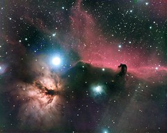 Horsehead Nebula (IC434) #explored (photosinferno) Tags: horseheadnebula orion ic434 nebula lrgb astronomy astrophotography astroimaging astronomyorion deepsky deepskyobject nightsky pixinsight paramount paramountmyt universe skywatcheresprit100triplet esprit100 southernnightsky southernhemisphere spaceimages unguidedimaging rigrunner kendrickpoweredusbhub theskyx