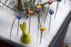Am I too early? (petrOlly) Tags: europe europa germany deutschland winter spring balcony garden inthegarden object objects decoration snow easter2018