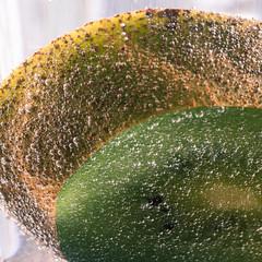 Kiwi im Blasenmeer (FMbrod) Tags: pentax k3ii pentaxk3ii pentaxmakro pentaxmacro makro macro pentaxdfa100mmwr kiwi