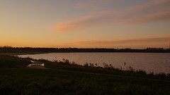 Winter morning (Steenjep) Tags: vinter winter sø lake water vand sun sol sky himmel cloud morning morgen fuglsangsø
