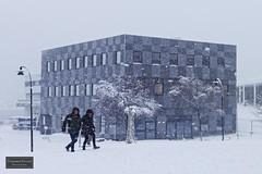 More of the white stuff (Torbjørn Tiller) Tags: havneterminalen prostneset tromsø tromso winter snowing arctic norway