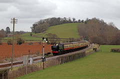 9466 - Williton (Andrew Edkins) Tags: 9466 panniertank greatwestern gwr westsomersetrailway preservedrailway uksteam light semaphoresignal travel passenger tankengine somerset williton steamgala march 2018 spring canon geotagged telegraphpole trip england sky clouds overcast afternoon station