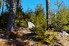 Black Forest (JONSCHA) Tags: badenwürttemberg deu deutschland geo:lat=4782796849 geo:lon=817866415 geotagged schluchsee