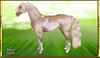 Elite Equestrian's Easter Hunt Prizes (honeyheart1) Tags: easter treasure hunt prize free eliteequestrian bunny crocus horse pinto paint sl secondlife