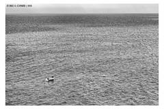 "How far till the Horizon? <a style=""margin-left:10px; font-size:0.8em;"" href=""http://www.flickr.com/photos/66444177@N04/41121921112/"" target=""_blank"">@flickr</a>"