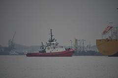 SD Jacoba (Hugo Sluimer) Tags: portofrotterdam port haven nlrtm onzehaven vlaa neder zuidholland holland scheepvaart