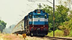 Offlink Itarsi ALCo Twins with Karnataka Express (apekshamallya) Tags: railfanning indianrailways locomotive trainspotting railroad train engine track nikon karnataka express kk itarsi alco diesel trainphotography trainpic dieselpower