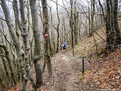 Ultra Trail Valle Degli Dei