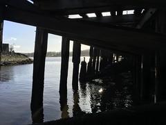 Woodwreck (Catrine B. Martin) Tags: nature landscape ruins wood broken shadows quai destroyed dock