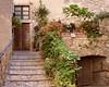 Lugnano (Jolivillage) Tags: jolivillage village borgo lugnano ombrie umbria italie italia italy europe europa porte porta door plantes picturesque old geotagged