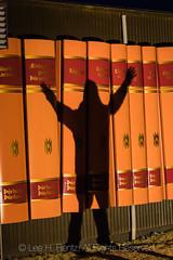 Giant Books Celebrating Author þórberg þórðarson in Hofn, Iceland (Lee Rentz) Tags: breiðamerkurjökullglacier europe european hali highway1 hofn hornafjorður höfn iceland icelandic northatlantic ringroad thorbergurcenter thorbergurculturalcenterandheritagemuseum thórbergurcenter thórbergurthórdarson vatnajokullnationalpark art author beloved book books celebrated dark early farm fjord fun haunted illuminated large library lighted march museum night outdoors restaurant scary sculpture shadow spines tourism travel traveling vertical winter writer writing þórbergþóoðarson