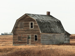Standing up well (annkelliott) Tags: alberta canada seofcalgary building structure architecture old house farmhouse homestead wooden ingoodcondition abandoned weathered landscape scenery prairie field tree silos grass sky outdoor fall autumn 30october2017 fz200 fz2004 panasonic lumix annkelliott anneelliott ©anneelliott2017 ©allrightsreserved
