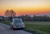 Choupette au matin (Lawrencexx79) Tags: vw volkswagen airccoled beetle bug käfer coccinelle voiture car oldschool morning matin nature paysage landscape switzerland sky