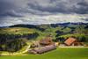 Landwirtschaftsbetrieb (Hanspeter Ryser) Tags: birke baum landschaft willisau pilatus grün hergiswil wald schweiz switzerland centralschweiz gras