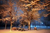 A table for two (Captions by Nica... (Fieger Photography)) Tags: winter weather serene trees tree nature cold covered snow snowstorm picnictable parc park forest quebec canada march branches picnic table night nighttime
