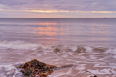 Pastel Morning (scottprice16) Tags: england northumbria alnmouth beach morning pastel colour seaweed waves sunrise horizon ship tide cloud sky spring march 2018 northsea calm peace mindful mindfulness reflection red orange pink fuji fujixpro2 35mmf2 tripod longexposure xtrans