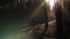 PGH59161 (klangcharakter) Tags: wald bäume baum natur nature weg waldweg fahrrad mensch fahrradfahrer sport sonnenuntergang sonne lensflares panasonic gh5 mft lumix voigtländer 425mm f095 iso200 1125sek wildsachsen hofheim taunus hessen nokton