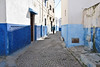 Delivering Bread, Blue Town, Rabat (meg21210) Tags: bluetown rabat morocco alley youngman cat streetscene blue mosquitocontrol