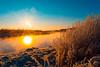 Evaporation (lazarev.ma.ru) Tags: severodvinsk winter snow sun rise forest зима снег лес северодвинск солнце восход