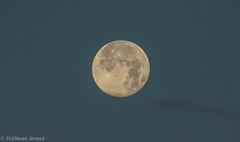 Pleine lune (TravelerRauni) Tags: france paysage continentsetpays nature lune ciel europe departementsdoutremer guadeloupe antilles dom fr fra montagne moon sky verdure vert cloud clouds cloudy landscape