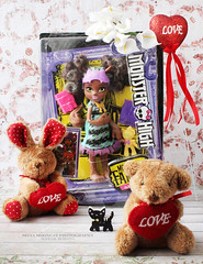 Pawla Wolf (seiya_mooncat) Tags: monsterhigh doll dolls osalina mattel photo photos mh 2018 monsterhigh2018 photoshoot pawlawolf werewolf wolf monsterfamily