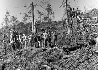 Class of 1968 Planting Trees for Moore Mill in 1966
