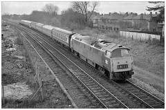 D1033 at Streetsbrook Road (75/03/1975) (geoff7918) Tags: d1033 streetsbrookroad solihul 0905paddington birmingham goodsyard footpath broadoaksroad 29031975
