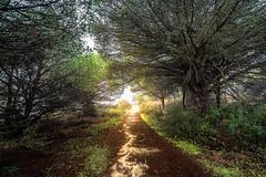 El Rompido (Dancodan) Tags: nikon d7100 frangarrido paisajes naturaleza andalucía españa 500px fb elrompido huelva nikkor1024mmf3545gdxswmedifasphericalafs
