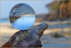 Was, wenn  ... (der bischheimer) Tags: kugel glaskugel crystal strand baum ostsee baltic canon derbischheimer