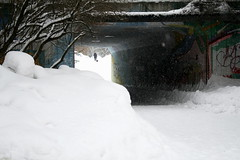 (S)NO(W) more! (arcticbramble) Tags: snow lumi walk kävely winter talvi white valkoinen