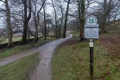 NB-1.jpg (neil.bulman) Tags: countryside longshawestate tree peakdistrict nature nationalpark derbyshire longshaw trees derbyshiredalesdistrict england unitedkingdom gb