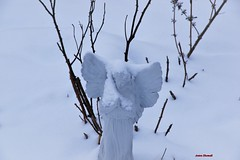 Angel in the Snow (Anton Shomali - Thank you for over 1 million views) Tags: angel sculptures snow furniture symbolize angelinthesnow garden entryway winter statues nature spiritual memory messengers god outdoor backyard heaven cold season heavenly inspire guardian