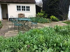 Spring Garden (amanda.parker377) Tags: green greenleaves plants essex englishcountrygarden nationalgardenscheme barns listedbuildings outsidedining springgardens patios