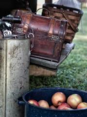 Chuckwagon Gear (Anne Worner) Tags: anneworner em5 olympus apples basket leather outside pan satchel stilllife chuckwagongear food fruit enamelpan handle straps